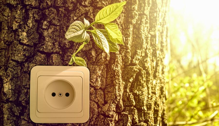 l'impact de la consommation de l'énergie